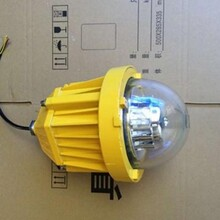 厂家直销BPC8765LED防爆平台灯价格优惠