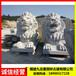 九龙星园林古建青石狮子定制,青石狮子价格
