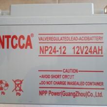 恩科NTCCA12V24AH蓄电池NP24-12铅酸蓄电池UPS专用EPS不间断电源图片
