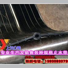 橡胶止水带工程专用中埋式橡胶止水带哪家专业图片