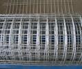 热镀锌电焊网改拔电焊网