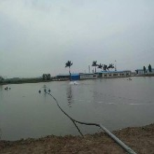 北京渔友乐360管道投料机水产养殖设备性价比最高图片