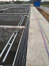 流水槽,循环水,工厂化养殖用投料设备--首选渔友乐图片