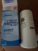 供应中国重汽配件CELT重汽豪沃滤芯图片