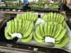 香蕉全国代办