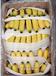 廣西香蕉代辦