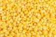 益阳张经理现款求购大量玉米小麦