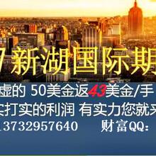 新湖白银期货_总部运营招商首页