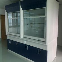 河南格拉瑞斯供应实验台通风柜全钢实验台通风柜图片