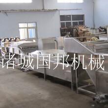 国邦供应地瓜高压喷淋清洗机,连续式清洗机