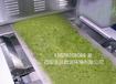 西安茶叶微波干燥杀青设备