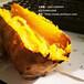 铜川黄皮苏薯8号红薯价格承德红皮苏薯8号红薯供应价