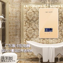 中国十大电热水器入围品牌[广东赛卡尼热水器厂家]图片