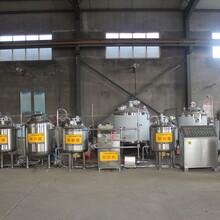 鲜奶生产线,小型酸奶生产线,酸奶发酵设备