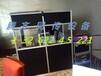 天津同声翻译设备租赁--腾齐服务最给力
