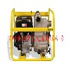 PT3A高效排污泵-威克小型污水排涝泵