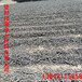 河南省登封市祥隆牌凈水材料柱狀活性炭水處理濾料