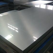 供应304不锈钢板,304不锈钢卷,可定开不定尺。