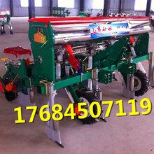 新款免耕型玉米播种机拖拉机悬挂式玉米精播机