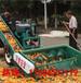 浙江玉米扒皮脱粒机玉米大型脱粒机双筒玉米脱粒机报价最低