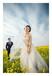 婚纱照片类别今年又多了哪些呢?