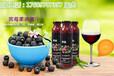 电商黑莓复合果汁饮品代加工ODM厂家