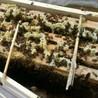 西安本地怎么才能买到中华土蜂蜜蜂