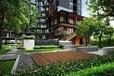 奥英国际公寓第二期开放预售,包租5年6%年回报率!
