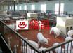 成品养殖格栅板a宁德成品养殖格栅板a成品养殖格栅板生产厂家