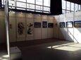3米高书画展板_上海书画展板工厂_书画展板出租图片