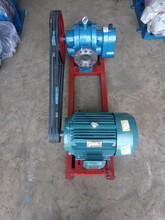 高粘度罗茨泵输送硅油沥青