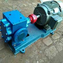 高温沥青保温泵耐高温200度沥青松香专用泵