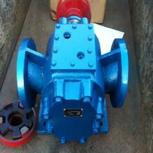 厂家直销沥青保温泵不锈钢沥青保温泵现货销售