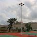 武夷山球场灯杆有哪些厂家/优格户外球场灯杆照明原装现货
