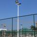湛江体育馆灯杆照明厂家/优格新款锥形镀锌灯杆颜色可定制