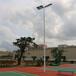 宁德室外广场篮球场灯杆厂家/优格球场灯杆设计安装安全可靠
