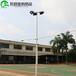 平顶山室外球场灯杆镀锌管灯杆灯柱/优格8米球场灯杆照明厂家