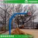 中山公园篮球架户外体育运动篮球架/优格专业篮球架安装设计