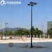 宜昌篮球场灯杆户外8米球场灯杆厂家/优格各类球场灯光照明批发