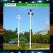 上饶户外球场灯杆专业安装/优格8米LED照明灯杆厂家供应