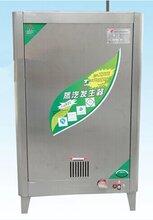 公司新上燃气蒸汽锅炉_小型液化气蒸汽锅炉图片