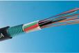 贵州8芯光缆价格,贵州8芯光缆厂家,国标8芯光缆价格