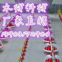 扬州平养料线厂家直销