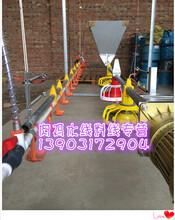 上海养鸡场饲料线
