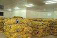 麗水市水果蔬菜保鮮庫廠家建設
