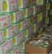 石家庄市香蕉保鲜冷库厂家建设找雪坊