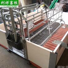欧式母猪产床国标热浸锌工艺利祥猪产床生产厂家母猪产床价格