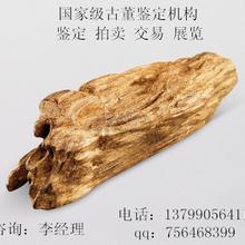 漳州哪里可以鑒定黃花梨木