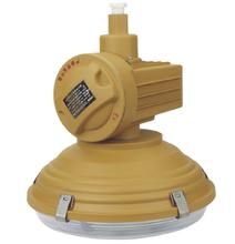 无极灯,SBD1105-YQL120免维护节能防爆灯图片