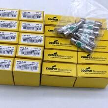 FNQ-1/10美国BUSSMANN巴斯曼1038保险丝当天发货